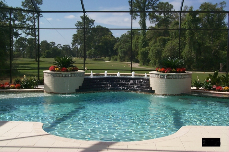 Freeform pool design orlando pool design windermere for Raised pool designs
